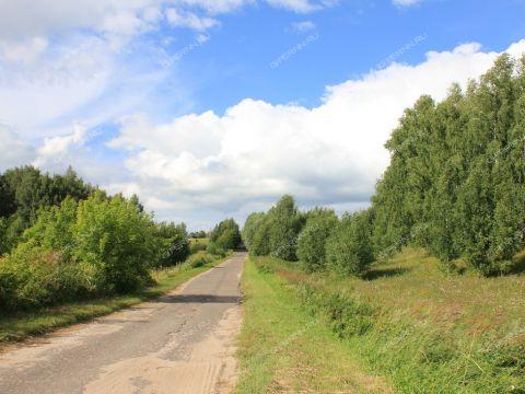 derevnya-sannikovo-bogorodskiy-municipalnyy-okrug фото