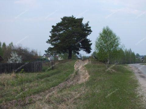 derevnya-zhukovka-gorodskoy-okrug-bor фото